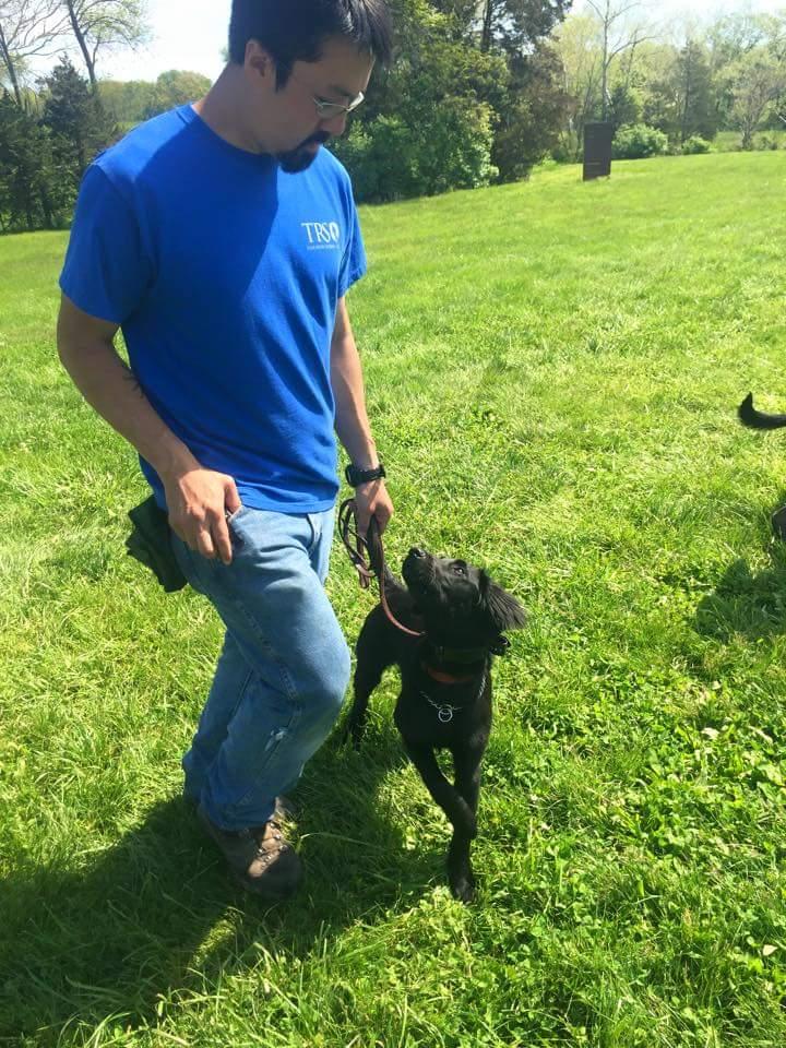 Daniel Kean Dog Trainer Tampa